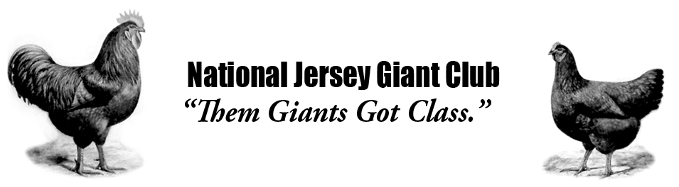 National Jersey Giant Club